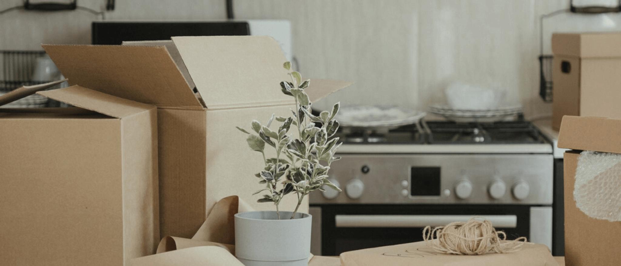 déménagement dans un logement